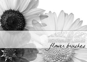 Flower Brushes by nureen-REStock