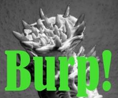 Burp. animation