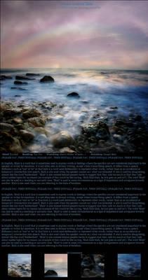 Ocean Journal Skin I