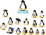 Linux CS 2