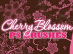 Cherry Blossom Photoshop Brushes