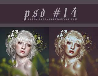 PSD #14