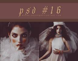 PSD #16 by RavenOrlov