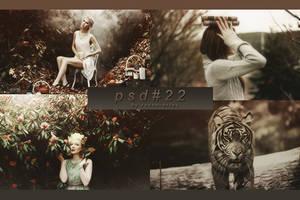 PSD #22 by RavenOrlov