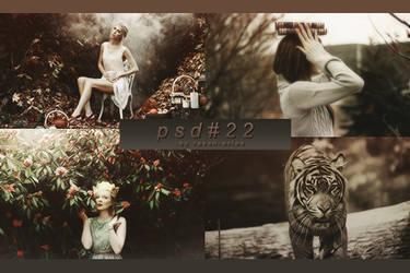 PSD #22