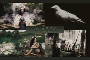 PSD #23 by RavenOrlov
