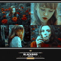 PSD #116 - Blackbird by RavenOrlov