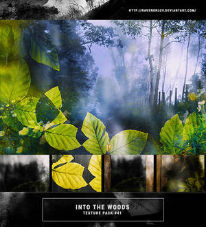 Texture Pack #41 -  Into The Woods