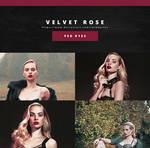 PSD #133 - Velvet Rose