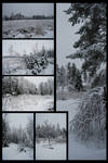Winter Package II
