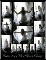 Veiled Princess Package by Eirian-stock