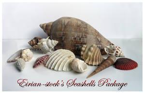 Seashells Package by Eirian-stock