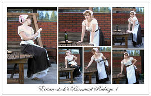 Barmaid Package I by Eirian-stock