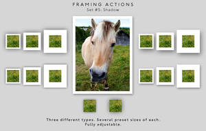 Framing actions - 5 - Shadow by chain