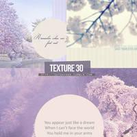 Tex30 by SamOutshiner