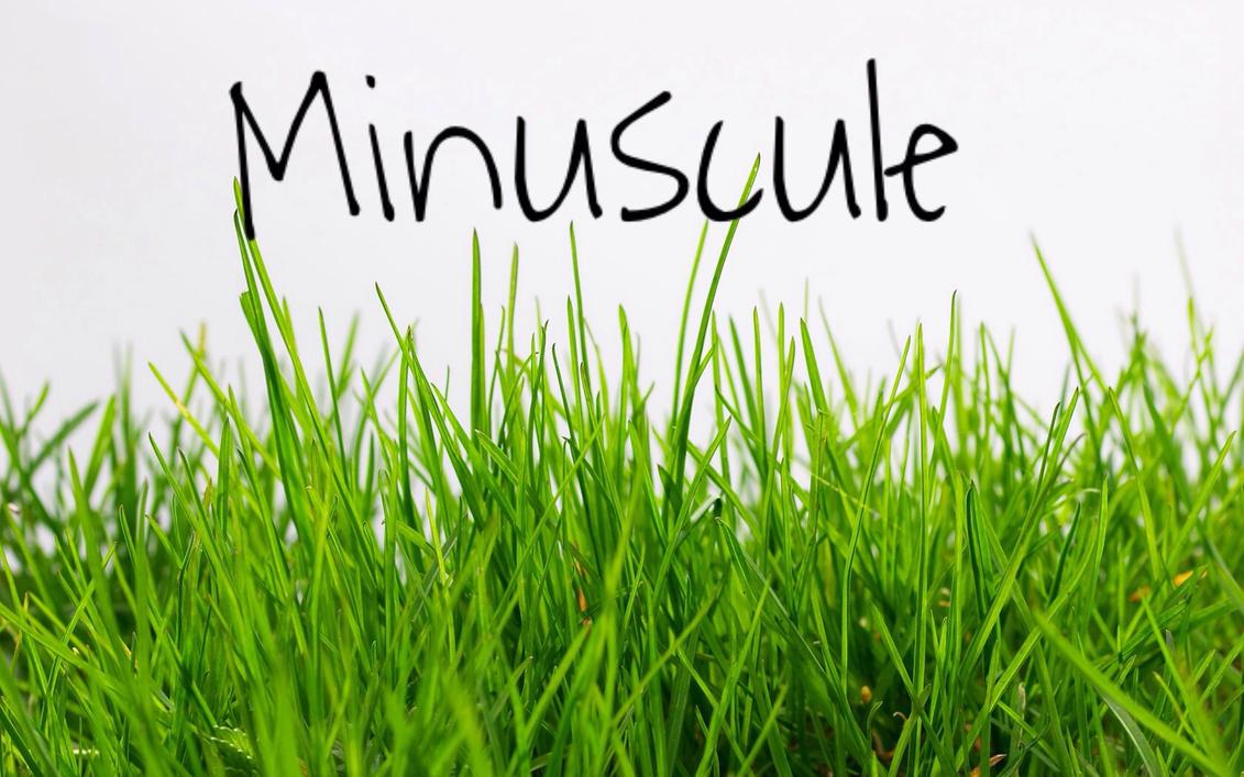 green grass png - HD1680×1050