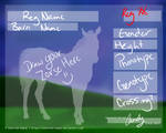 Zebroids-Equus Ref Sheet