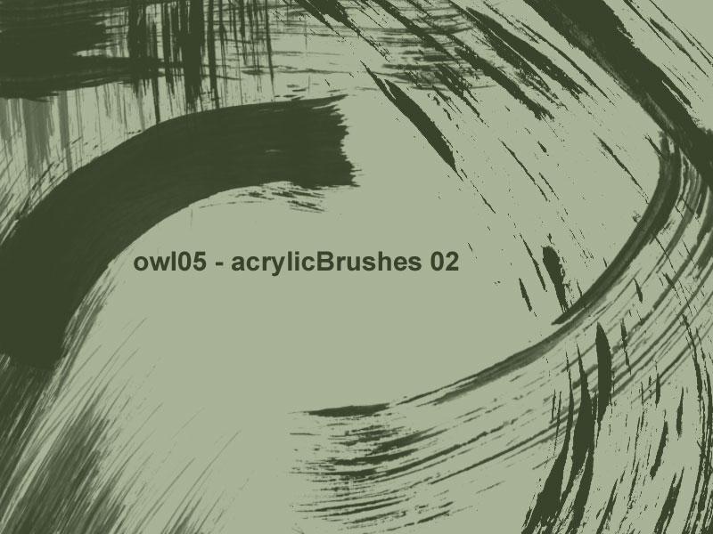 owl05 - acrylicBrushes 02