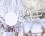 Winter Dream [Texture pack]