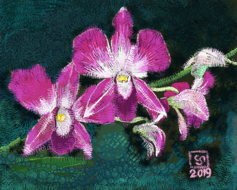 Orchid Delight AR by The-Tinidril