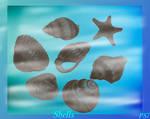 Sea shells brushes