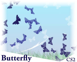 Butterflies_dream