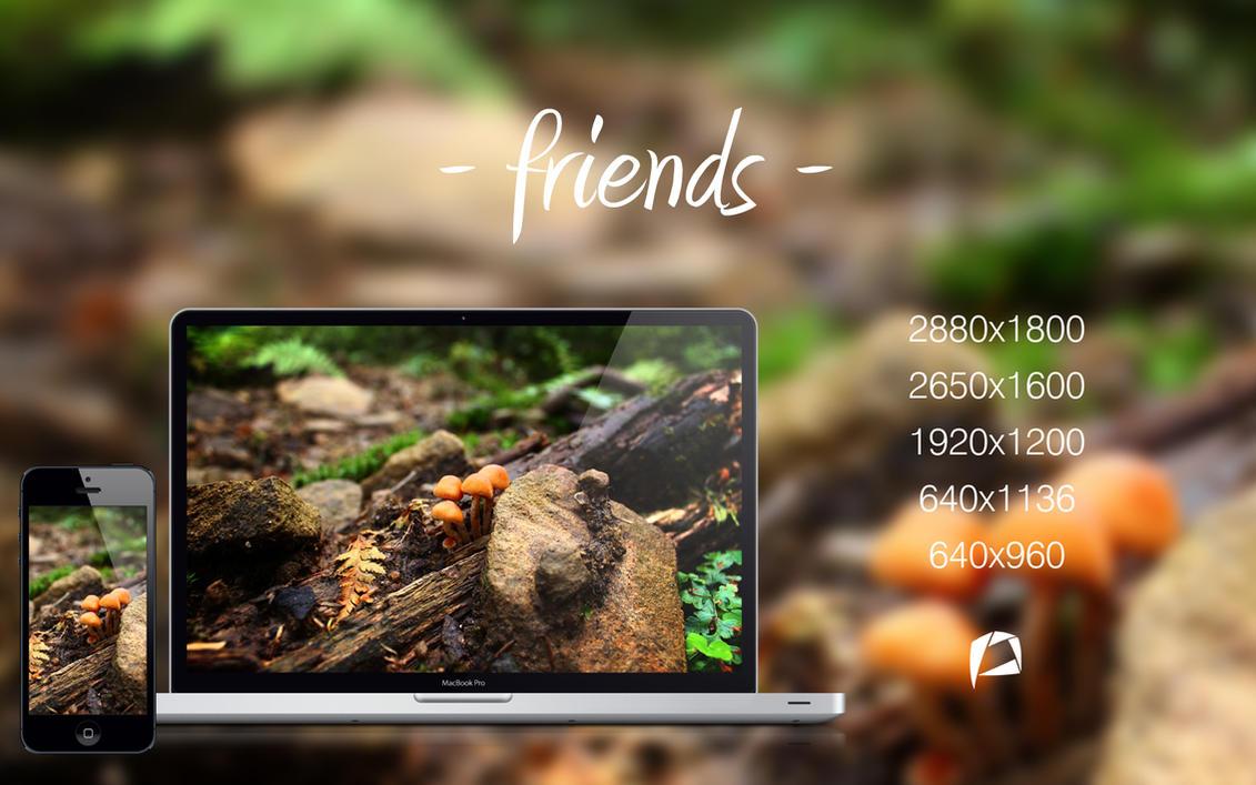 Friends by PietruH