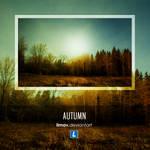 Autumn - Wallpaper