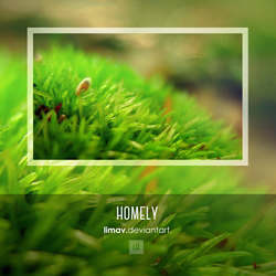 Homely - Wallpaper