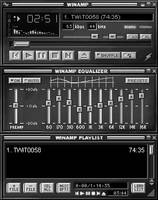 Winamp Classic Grayscale by thewhitefedora