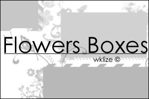 Flowers Boxes by WKLIZE
