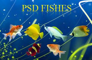 PSD Fishes by aradezignz