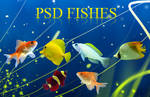 PSD Fishes