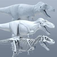 Tyrannosaurus Anatomy Study (GIF) by Sketchy-raptor