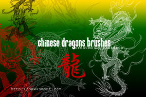 Chinese Dragons Brushes by hawksmont