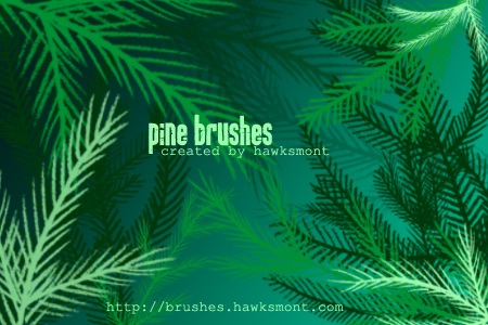 Pine Brushes MEGA PACK