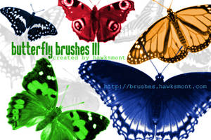 Butterfly Brushes III by hawksmont