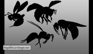 Hornet Shapes