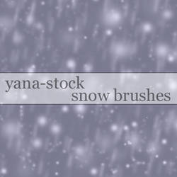 Snow Brushes by yana-stock