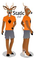 Static Character Sheet by weathereddragon