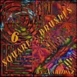 Square Brushes 6