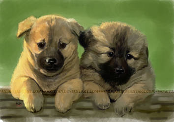 speed paint-puppies by moyan