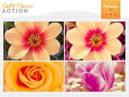 soft flower by Bourniio