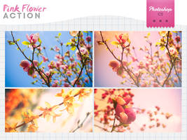 Pink Flower by Bourniio
