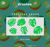 Brushes // (Tropical Leafs) by HyeonWoo