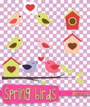 Spring birds png by alenet21tutos