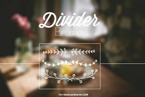   Divider Brushes  