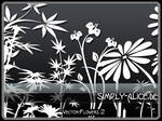 Vector-Flowers 2 -PS Brushes