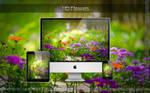 HD Flowers