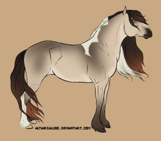 Gypsy Cob Base by AltairCallisto